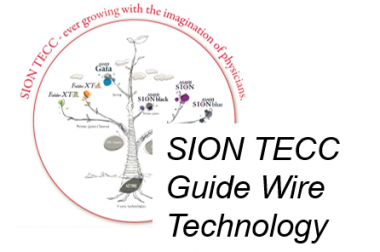 Asahi GUIDE WIRES TECHNOLOGY