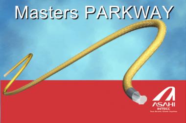 Masters PARKWAY – microcatheter